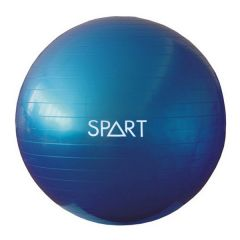 Фитбол Rising Anti Burst Gym Ball 65 см фото